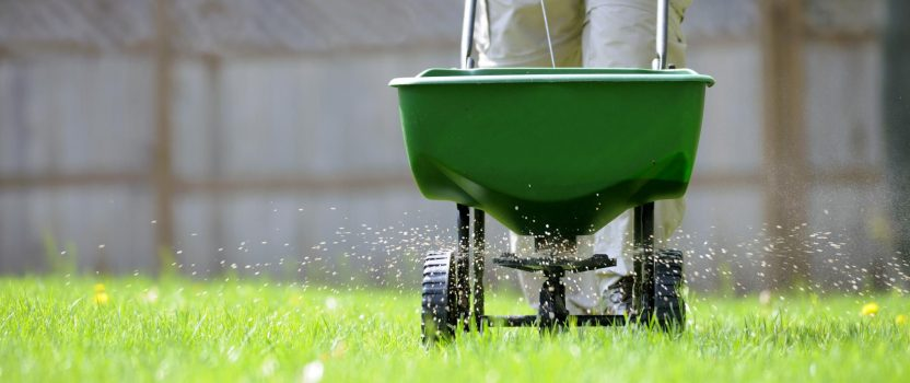 Tree fertilizing and aerating