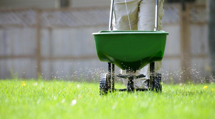 Tree fertilizing and aerating