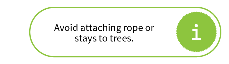 Avoid attaching rope or stays to trees.